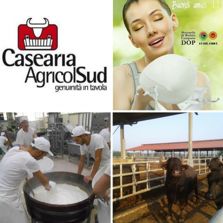 CASEARIA AGRICOLSUD  SRL
