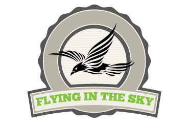 FLY IN THE SKY 2018